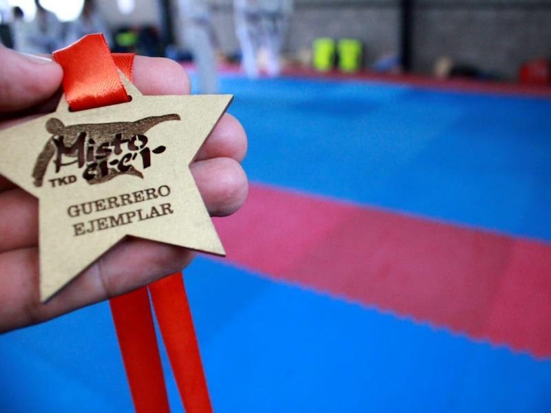 mistoerer taekwondo mexico 11