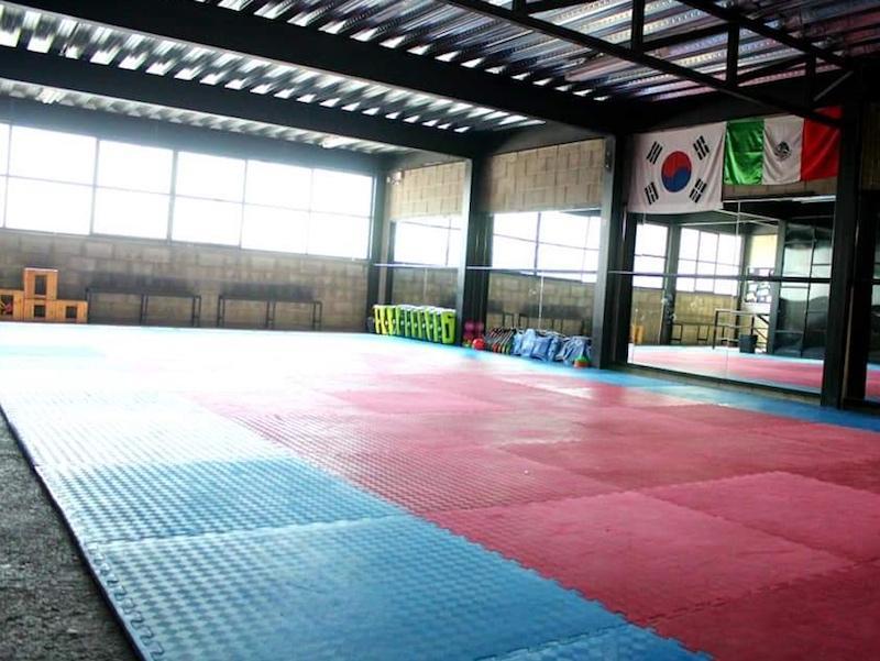 mistoerer taekwondo mexico 5